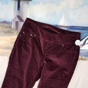 JAG Jeans Zin Nora High Rise Skinny Velvet Pull On
